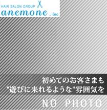anemone_thumbnail_no2_03